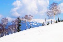 Ландшафт снега в Gulmarg, Кашмире, Индии Стоковое Изображение RF