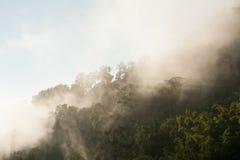 Ландшафт, солнечный рассвет в поле Стоковая Фотография RF