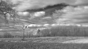 Ландшафт стана ветра стоковое фото