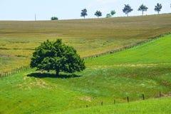 Ландшафт страны в Авероне (Франция) Стоковые Фото