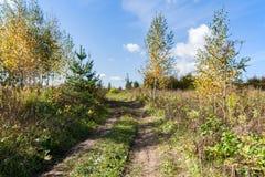 Ландшафт страны в теплом и солнечном дне осени Стоковая Фотография