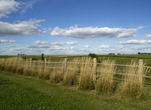 Ландшафт страны на дендропарке Ньютона Стоковые Фото