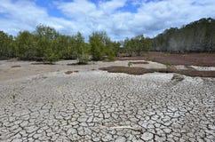 Ландшафт сухой земли Стоковая Фотография