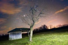 Ландшафт с винтажной деревянной лачугой и старым деревом Стоковое фото RF
