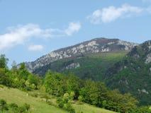 Ландшафт с горами и лесами стоковые фотографии rf