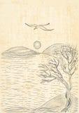 Ландшафт с деревом на холмистой чайке берега и летания моря Стоковая Фотография