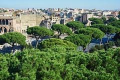 Ландшафт с деревьями города Рима Стоковые Изображения