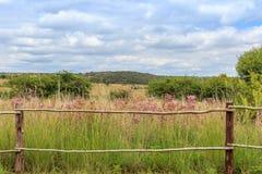 Ландшафт с деревянной загородкой Стоковое фото RF