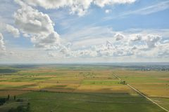 Ландшафт с зацветая полями в лете стоковые фото