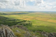 Ландшафт с зацветая полями стоковое фото