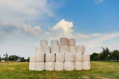 Ландшафт с кучей белых связок Стоковое Изображение RF