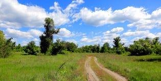 Ландшафт с дорогой колейности в степи Стоковые Изображения