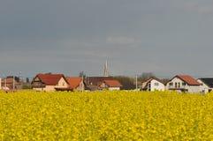 Ландшафт с полем и деревней рапса Стоковое Изображение
