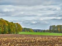 Ландшафт с полями и облаками Стоковые Изображения