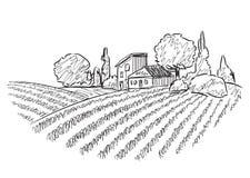 Ландшафт с полями Стоковое Изображение