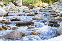 Ландшафт с рекой стоковые фотографии rf