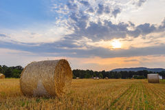 Ландшафт с связками на поле на заходе солнца Стоковая Фотография RF