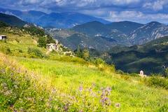 Ландшафт с лугом горы Стоковые Изображения