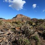 Ландшафт Тенерифе Канарских островов Стоковые Изображения RF