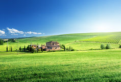 Ландшафт Тосканы с типичным домом фермы Стоковые Изображения RF