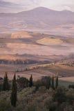 Ландшафт Тосканы стоковая фотография
