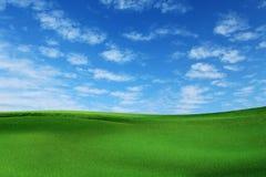 Ландшафт травы Стоковая Фотография RF