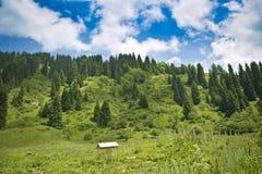 Ландшафт транс--Ili Alatau горы стоковое изображение
