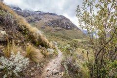 Ландшафт трека Santa Cruz, Blanca кордильер, Перу Южной Америки Стоковые Изображения RF