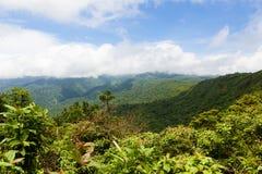 Ландшафт тропического леса в Monteverde Коста-Рика Стоковые Изображения RF