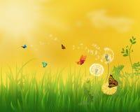 Ландшафт луга лета с травой иллюстрация вектора