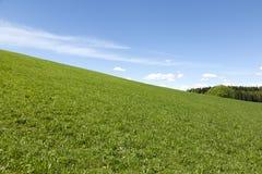 Ландшафт луга и голубого неба Стоковые Фото