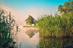 Ландшафт утра весны Стоковое Изображение