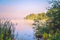 Ландшафт утра весны Стоковое Изображение RF