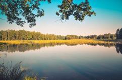 Ландшафт утра природы Стоковые Фотографии RF