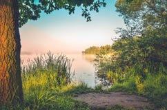Ландшафт утра природы Стоковые Изображения RF