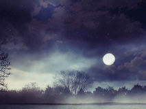 Ландшафт фантазии леса фантазии Стоковое Изображение