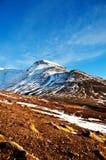 Ландшафт фьорда осени, захваченный в Исландии стоковое фото rf