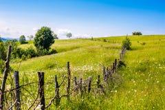 Ландшафт холма лета Стоковое фото RF