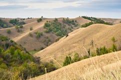 Ландшафт холмов покрытых с желтой травой на солнечном после полудня осени стоковое изображение