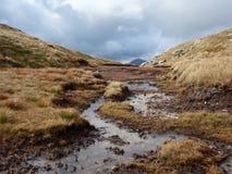 Ландшафт Шотландии Стоковые Изображения