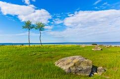 Ландшафт Стоковые Изображения RF