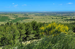 Ландшафт Apulia, Италии Стоковая Фотография