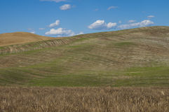 Ландшафт Chiant, tuscan Стоковая Фотография RF