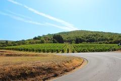 Ландшафт Chianti стоковое изображение rf