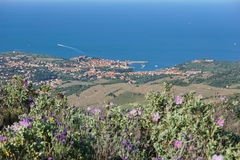 Ландшафт Collioure среднеземноморская Франция деревни стоковое фото