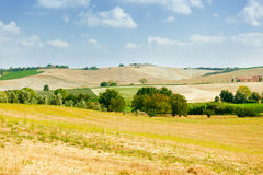 Ландшафт d'Orcia Val Стоковая Фотография