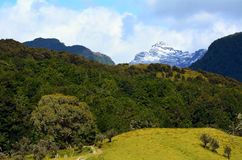 Ландшафт Glenorchy Новой Зеландии NZ NZL Стоковая Фотография RF