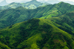 Ландшафт hilled зеленым цветом Стоковое Фото