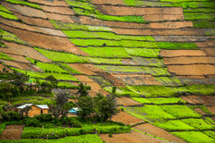 Ландшафт Kabale стоковая фотография
