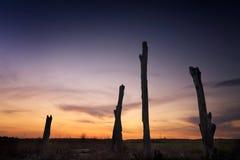 Ландшафт Penrith NSW Австралия захода солнца сельский Стоковые Фотографии RF